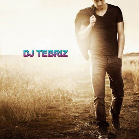 Dj Tebriz - Alone (Alan Walker)