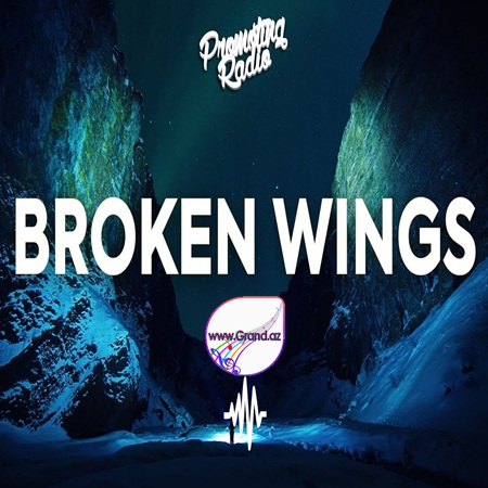 Political Statement - Broken Wings