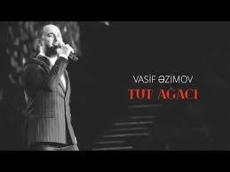 Vasif Azimov - Tut ağacı 2018